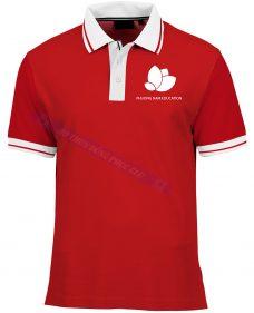 Thiet ke ao thun phuong nam education ATCT101 áo thun đồng phục